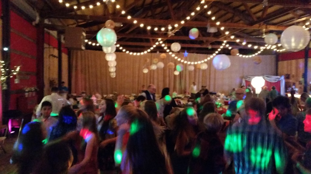 Bat Mitzvah Party On Sherwood Oregon Farm